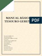 Apostila - Tesouro Gerencial.pdf