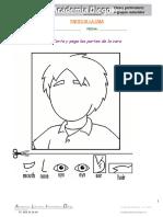 Partes de la cara.pdf