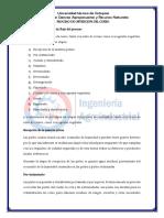 PROCESO DE OBTENCIÓN DEL CUERO 2 - copia.pdf
