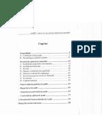 Curs_Audit_Aptitudini.pdf