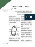 210161.pdf