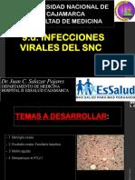 9-d-Infecciones-Virales-SNC