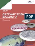 OCR GCSE Gateway Biology a Specification (2018) (J247)