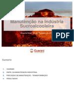 06 Guarani