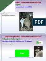 Aplicaciones de Biotecnología Industrial