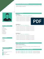 plantilla-curriculum-vitae-2.doc