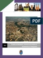 situatia economica timisoara.pdf
