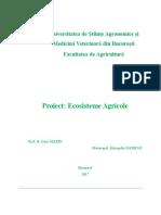 proiect mediu