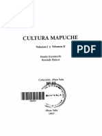 Cultura Mapuche (23)