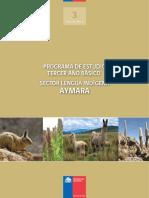 201210041825340.ProgAymara-3web.pdf
