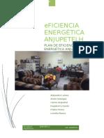 Plan de Eficiencia Energética ANJUPETELH 2016 Último