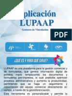 LUPAAP Gestores de Vinculacion