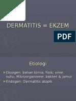 DERMATITIS = EKZEM.ppt
