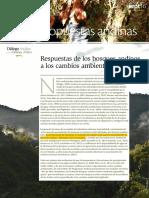 zCondesan__Propuestas Andinas