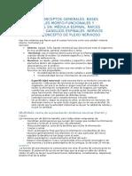 Neuroanatomia introducción.docx