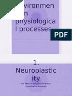 H Neuroplasticity and Stress