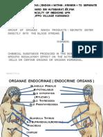 Systema Endocrina 220213