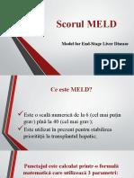 meld.pptx