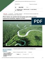 Perú Tiene Un Potencial Enorme Para Desarrollar Industria Forestal