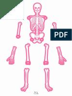 Human Body (1)