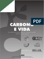 Carbono e Vida