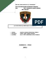 Mono Accion Penal Privado y Publico
