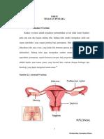 ca ovarium.pdf