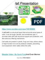 finished  cell wall presentation