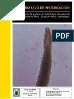 Parasitología - Trabajo Monografíco de Las Especies