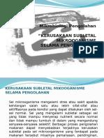 Kerusakan_Subletal_MO-2.pptx