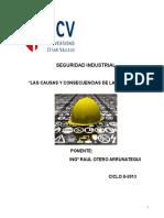 CAUSAS Y CONSECUENCIAS PERDIDAS(CP).doc