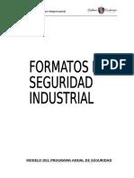 Formatos de Seguridad Industrial