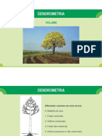 Aula 12 - Dendrometria - Volume
