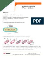 ava_cie7_uni4_r (1).pdf