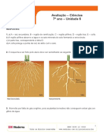 ava_cie7_uni6_r (1).pdf