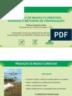 AULA 2 - PRODUCAO DE MUDAS FLORESTAIS - VIVEIROS E METODOS DE PROPAGACAO (2).pdf