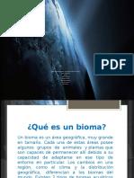 Biomas Marinos Biologia