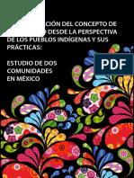 Sistematizacion Del Concepto de Desarrollo Perspectiva Pueblos Indigenas