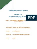 Informe tecnico N°01