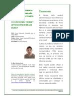 Articulo Abordajes to Dañocerebral
