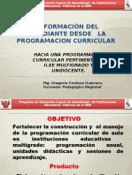 Programacion Curricular 2016