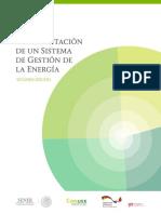 Manual_SGEn_Conuee.pdf