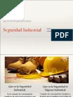UMG- Presentación Seguridad Industrial