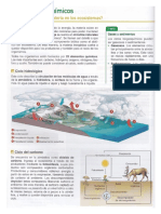 Ciclos biogeoquímicos .pdf
