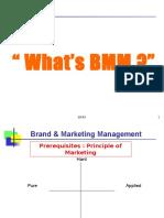 BMM L1 MeL Oct16 (1)