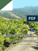 Palmito