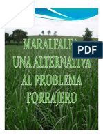 Maralfalfa.pdf