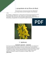 Descripción y Propiedades de Las Flores de Bach