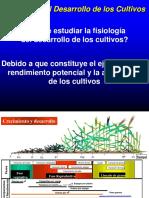 2_Desarrollo