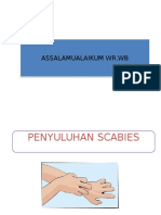 232287550 Penyuluhan Scabies Ppt